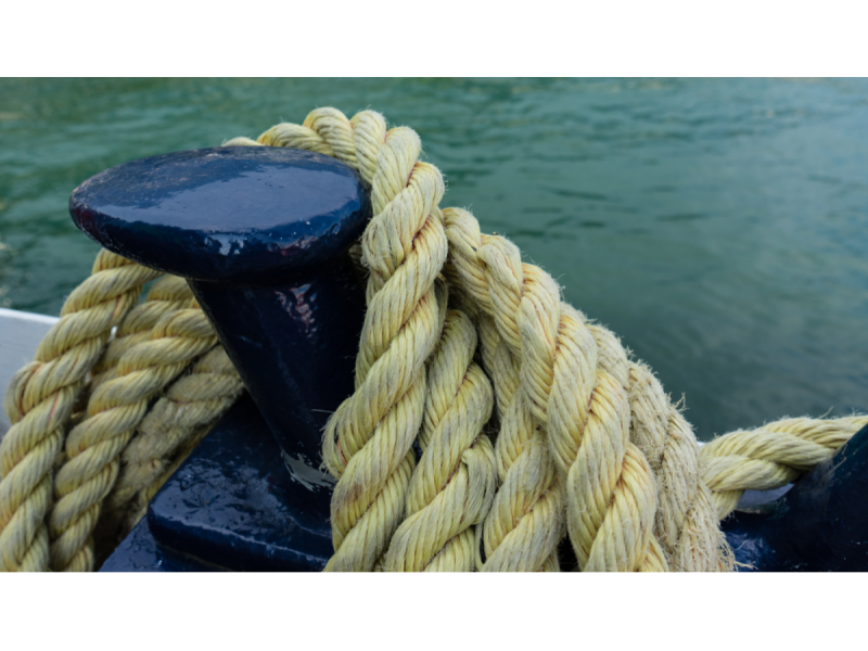 security-logo-rope