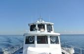 Derecktor Long Range Cruiser 88